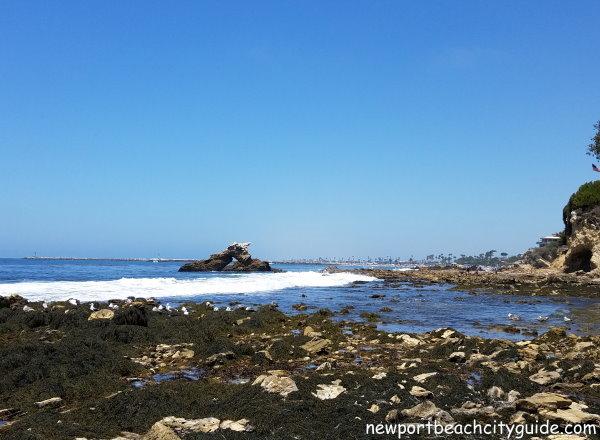 cameo shores beach newport beach city guide